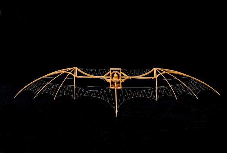 Glider-741x500